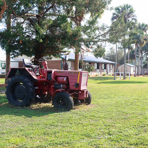 Our old antique tractor makes great photo ops!
