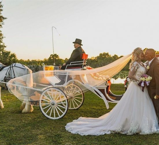 Laura Carriage
